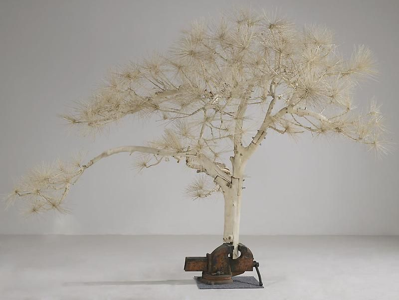 SHI JINSONG Short Pine Tree, 2007