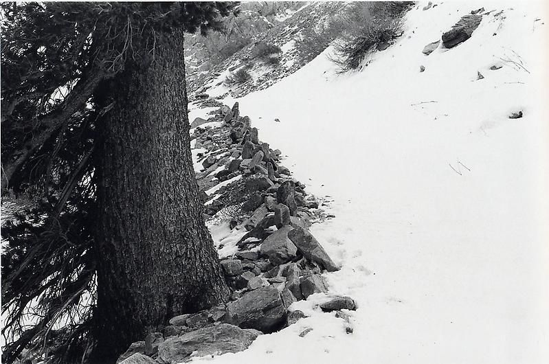 "RICHARD LONG A Stone Line Before a Blizzard a Fifteen Day Walk Into National Forest, California Winter 暴风雪前çš""石线,15天进入国家森林公园,加州çš""冬天, 2000"