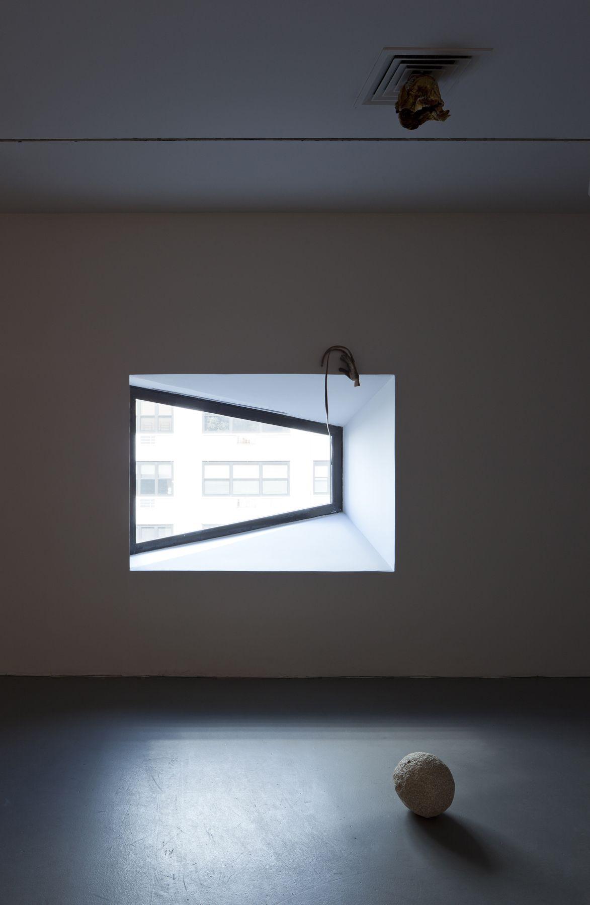 2012 Whitney Biennial, Whitney Museum of American Art, New York