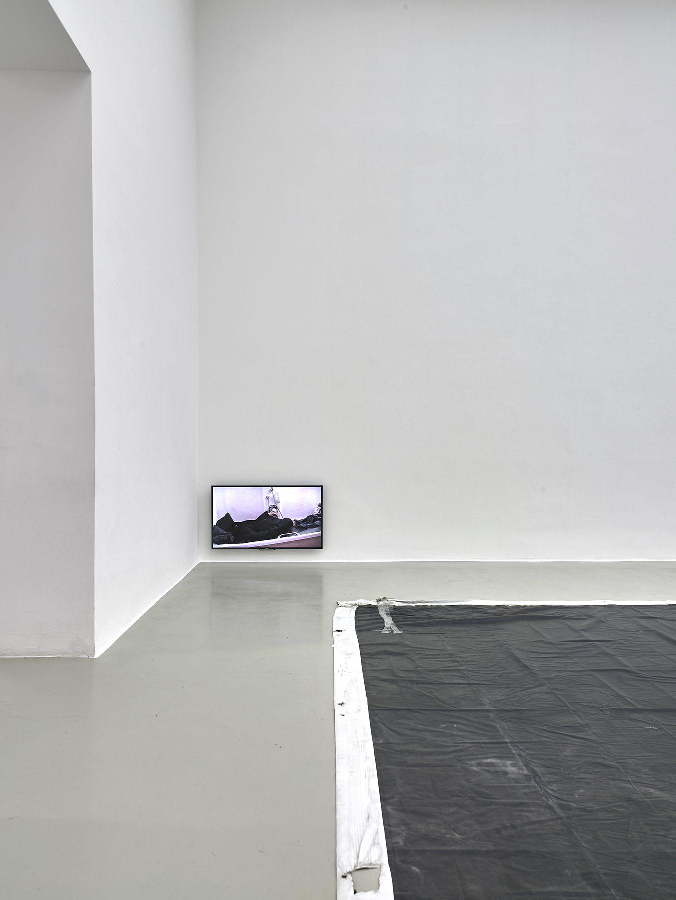 Kunstverein Hannover, HannoverNovember 21, 2015 - January 17, 2016