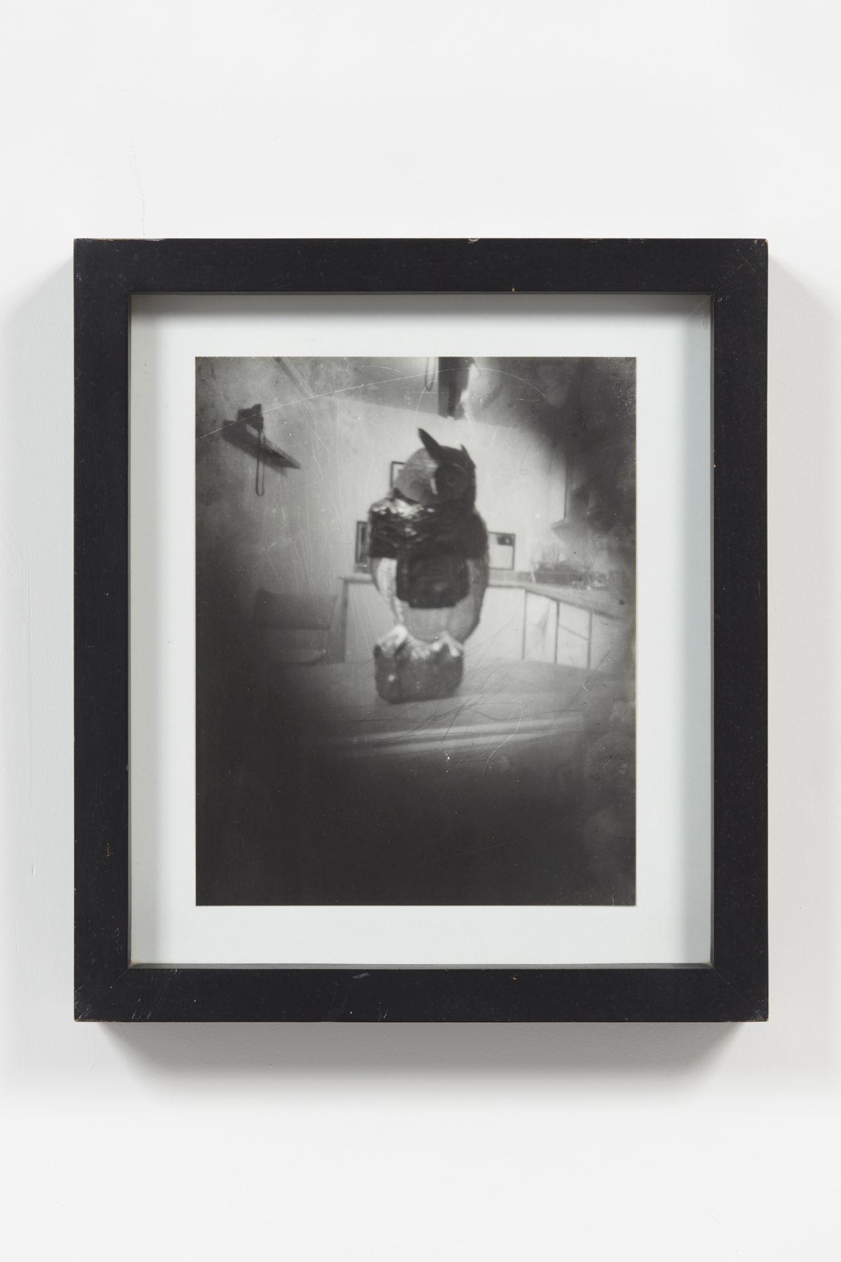 Jorge Pardo, Untitled (Pinhole Camera Owl Photograph)