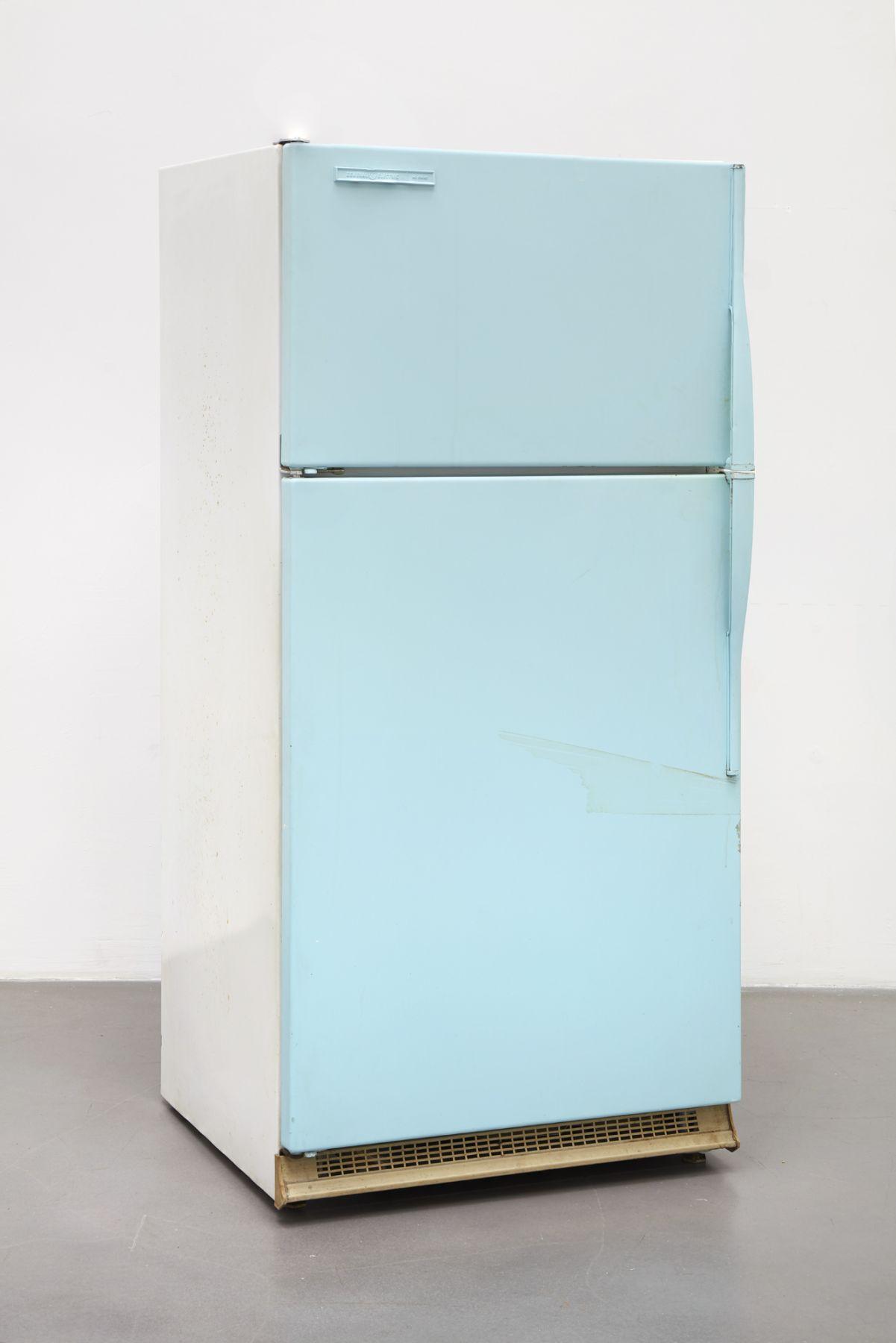Jorge Pardo, Refrigerator