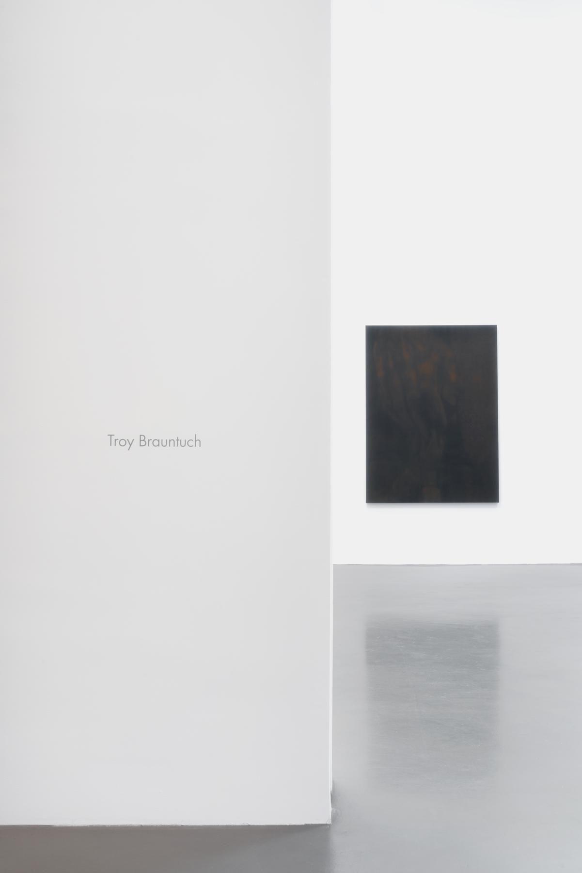Troy Brauntuch Installation view 1