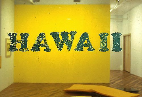 Hawaii Installation view