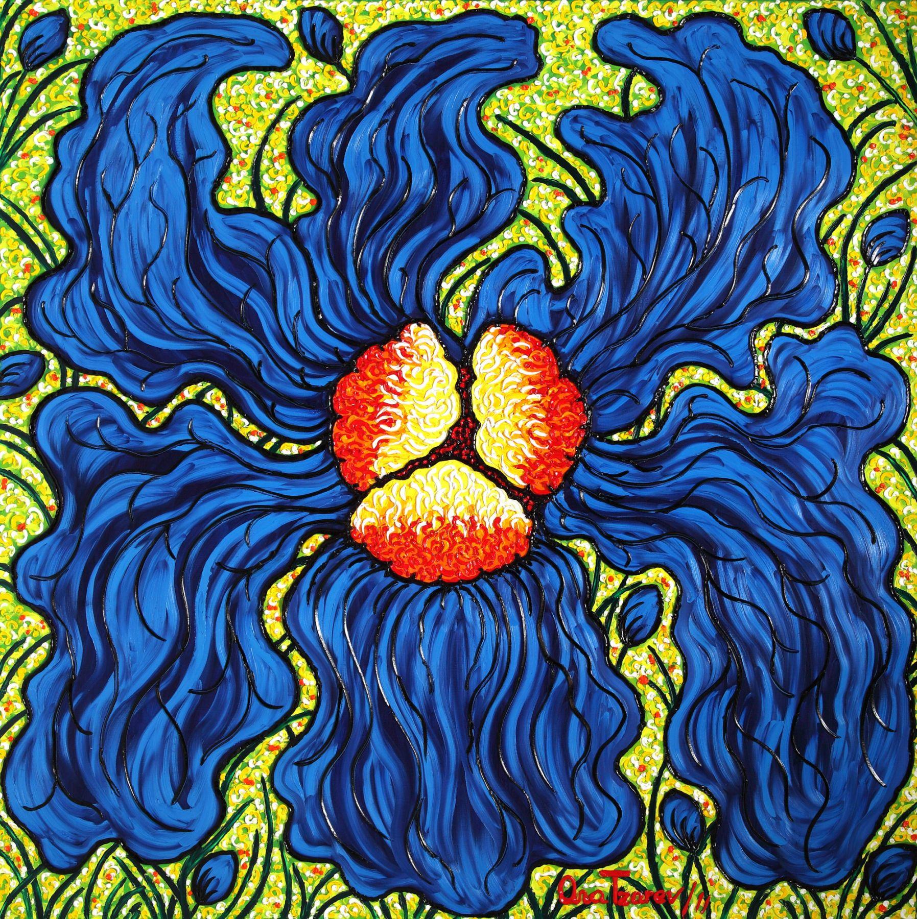 Fascination (Iris) (Garden-La Fleur du Cap), 2011 n 4175
