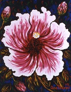 Rose Sunset, 2005