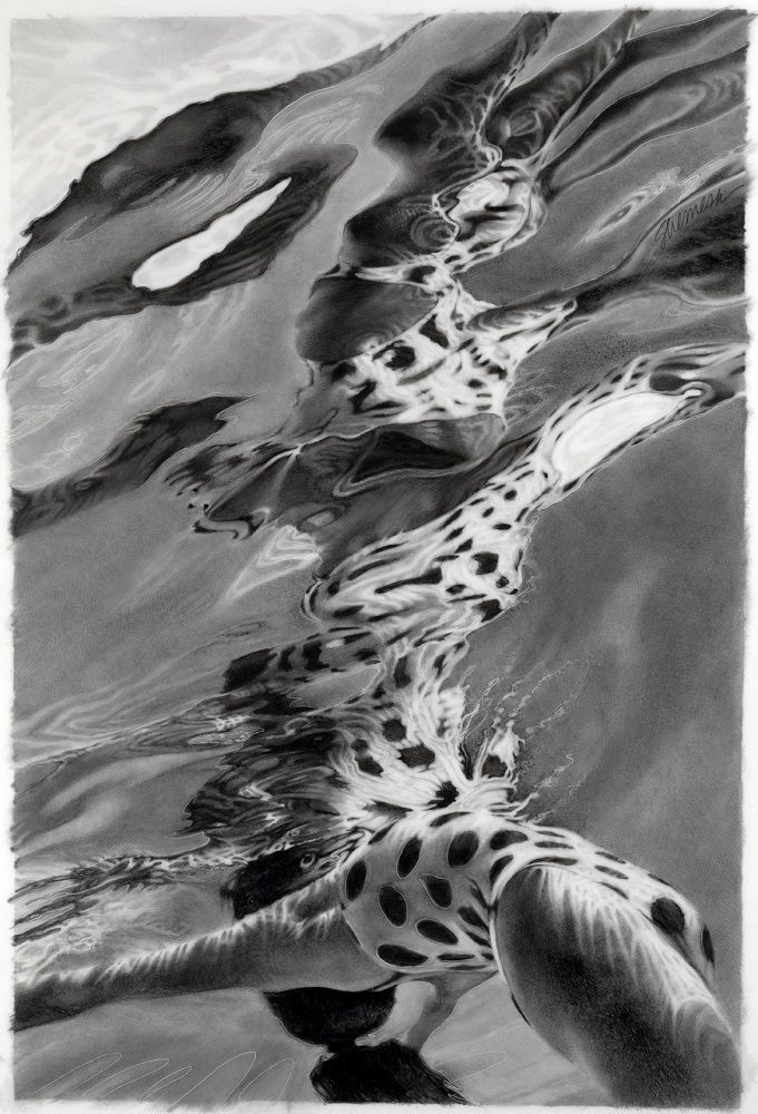 Lorraine Shemesh, Totem, 2014, Graphite wash on mylar, 32 1/2 x 22 inches, Realistic graphite underwater drawing. Lorraine Shemesh is an American artist who abstracts the human form. She marries figure-based painting with abstract expressionist concerns.