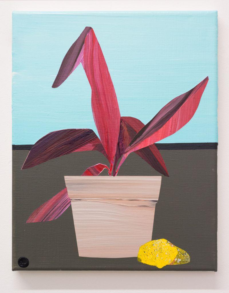 Paul Wackers, Plant Study, 2018