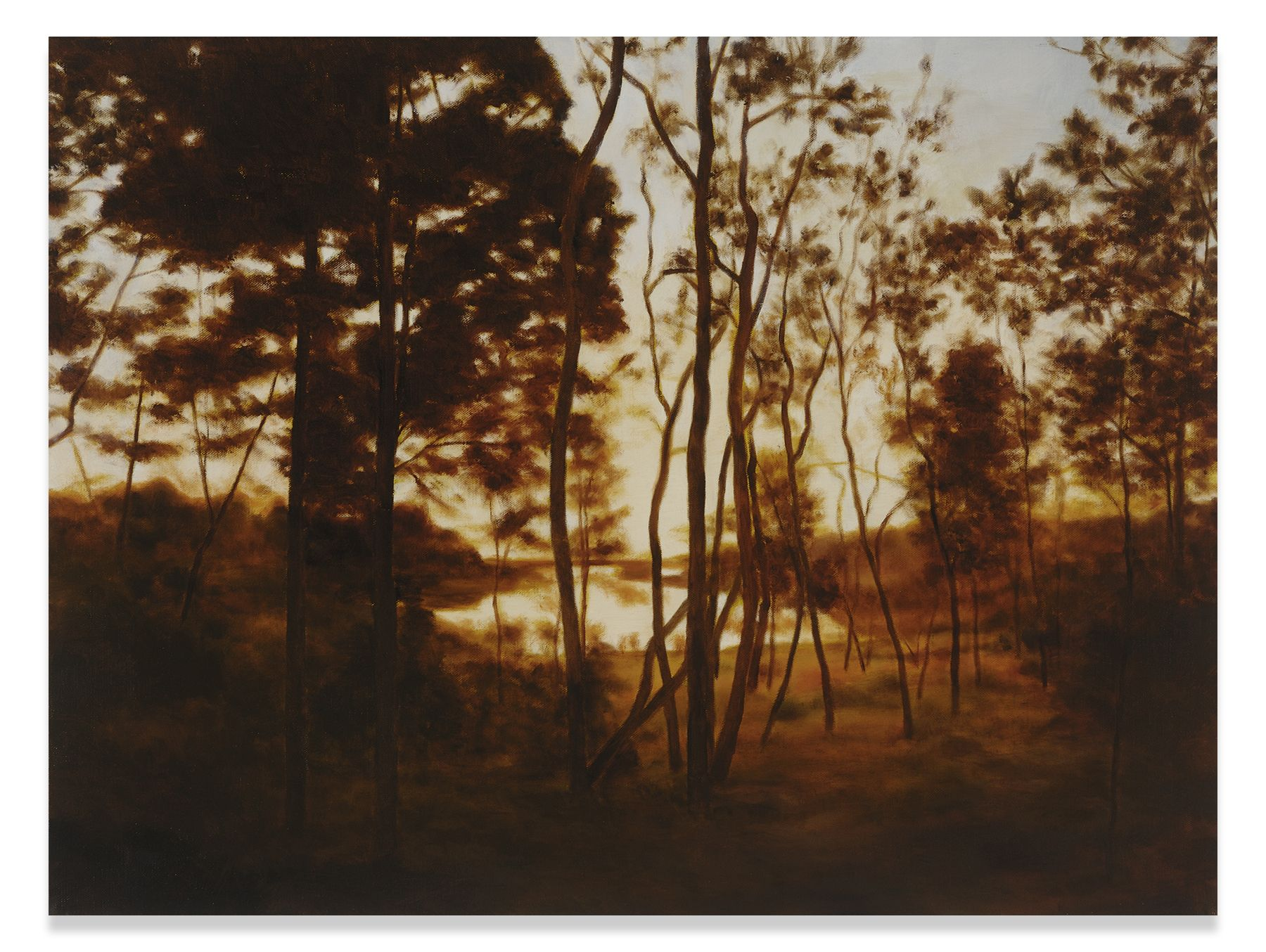 Fall Forest Light, 2015, Oil on linen,21 x 26 inches, 53.3 x 66 cm, MMG#30411
