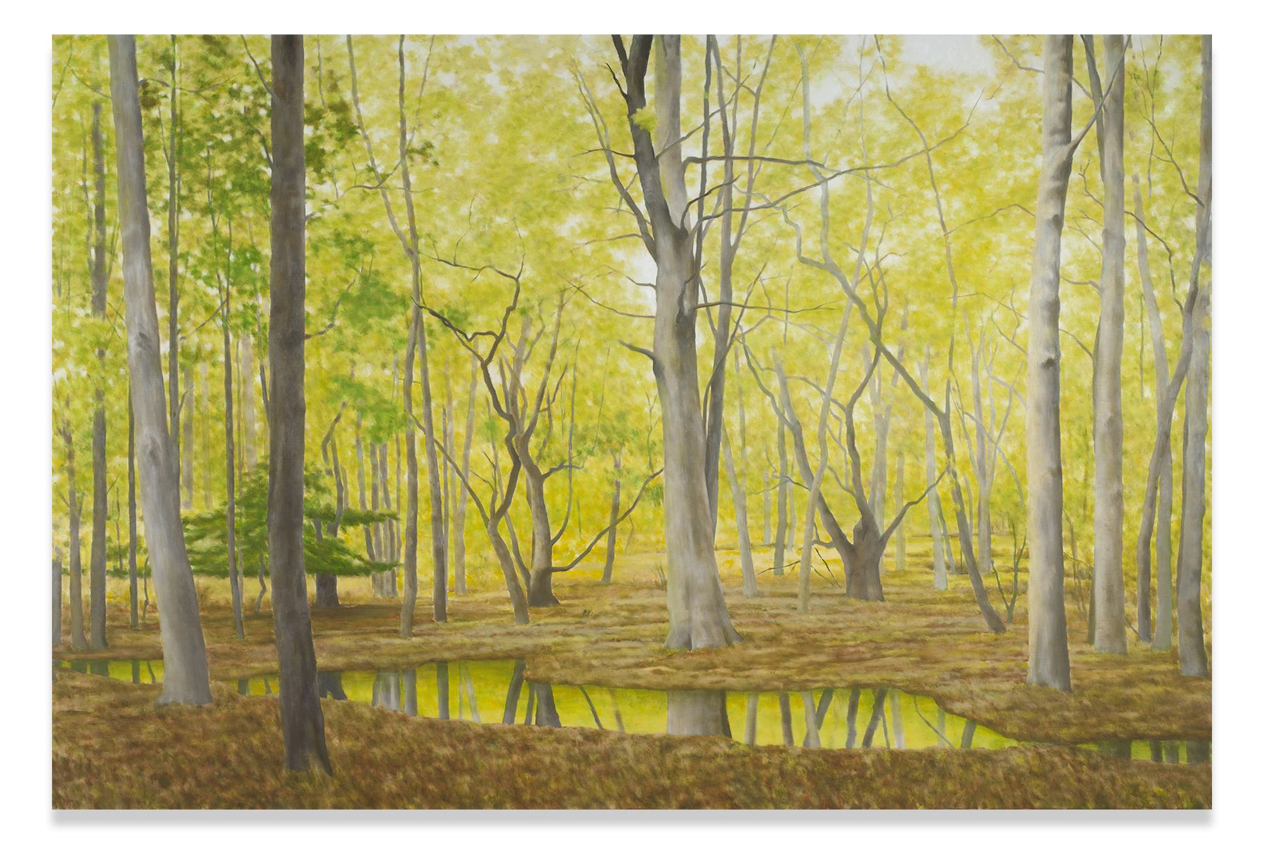 Spring Light and Still Water, 2016, Oil on linen, 72 x 108 inches, 182.9 x 274.3 cm, MMG#30407