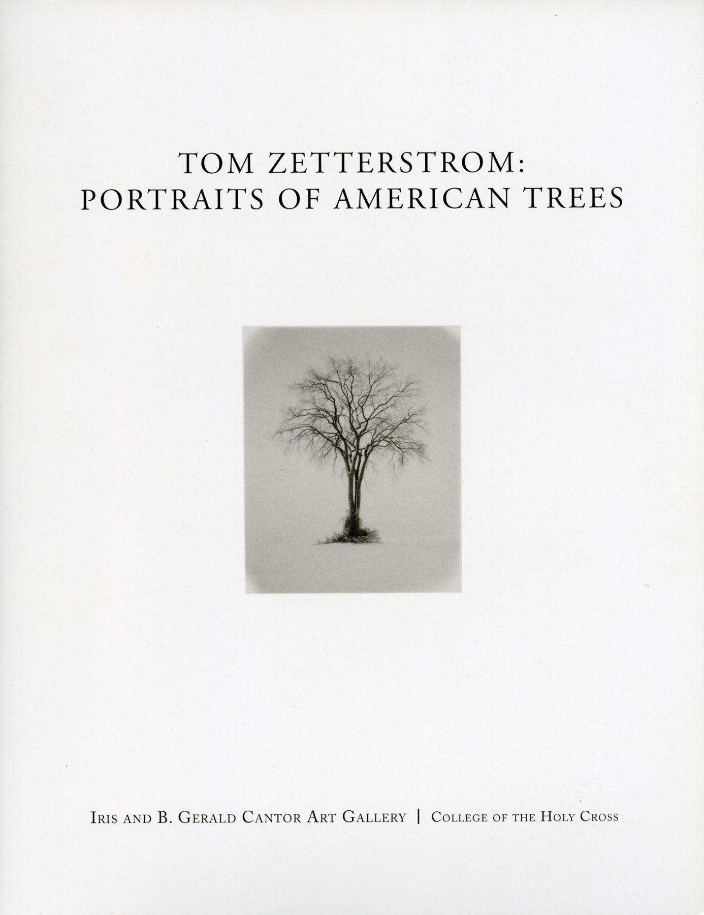 Tom Zetterstrom