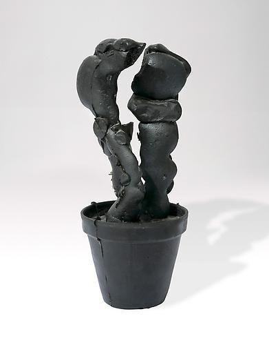 Fischli & Weiss, Cactus, 1987