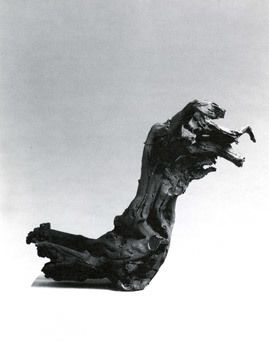 Fischli & Weiss, Tree Root, 1987