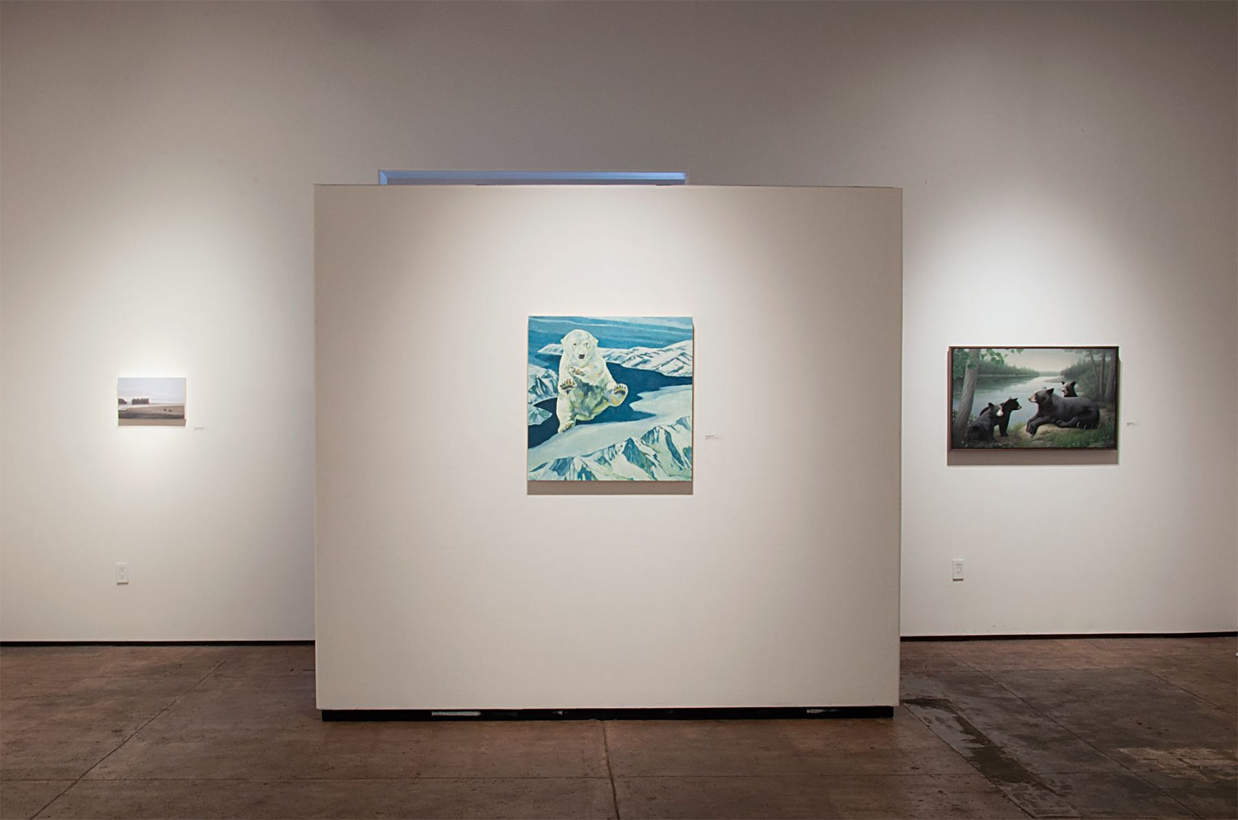 Contemporary Bear Area Artists Installation photograph, Pamela Kendall Schiffer, Nicole Strasburg, Susan McDonnell