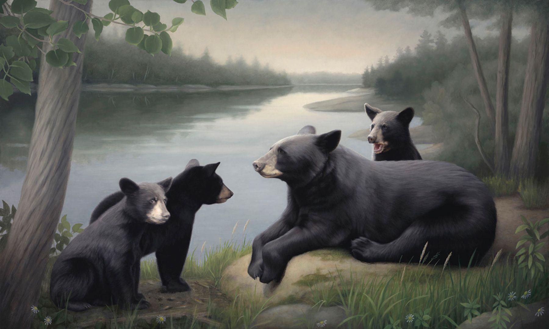 Susan McDonnell, Mama Bear, 2018