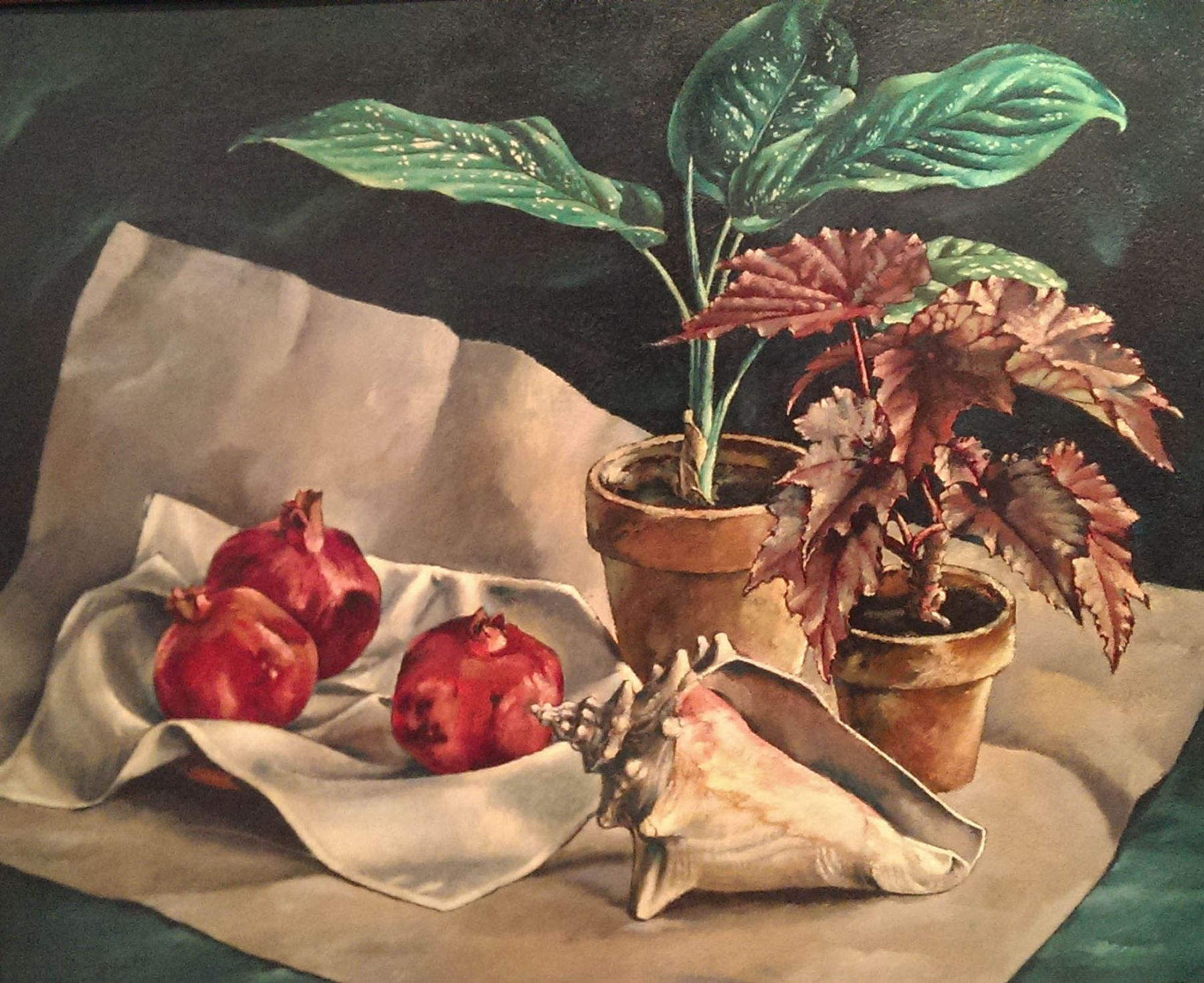 Jean Swiggett, Pomegranate and Conch,