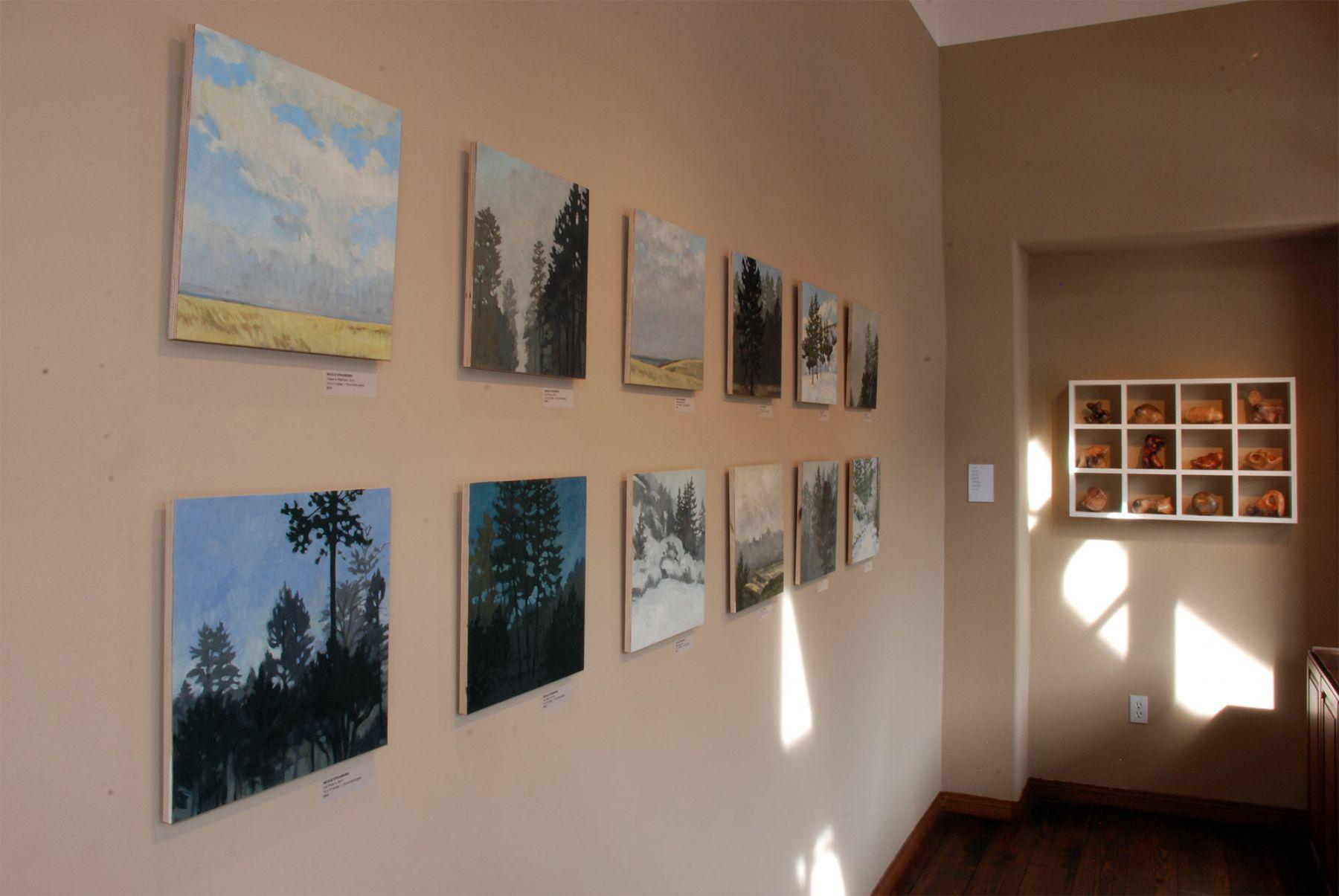 AN EVEN DOZEN installation, Nicole Strasburg
