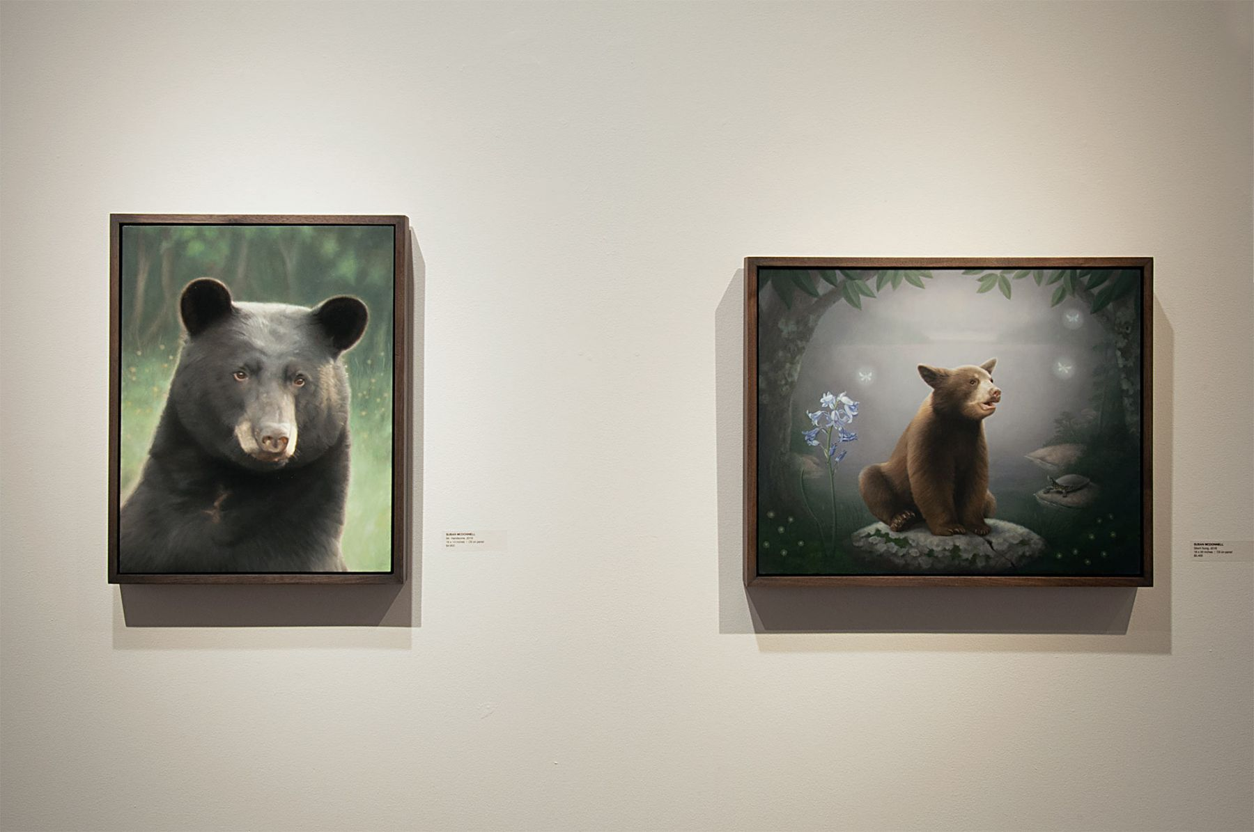 Contemporary Bear Area Artists Installation photograph, Susan McDonnell