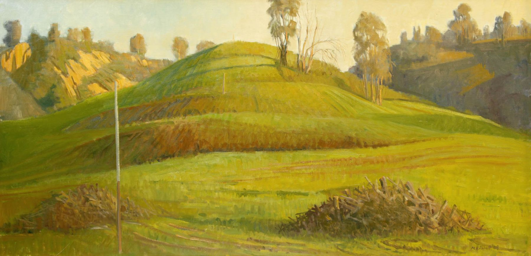 Meredith Brooks Abbott, Hill with Poles, 2008