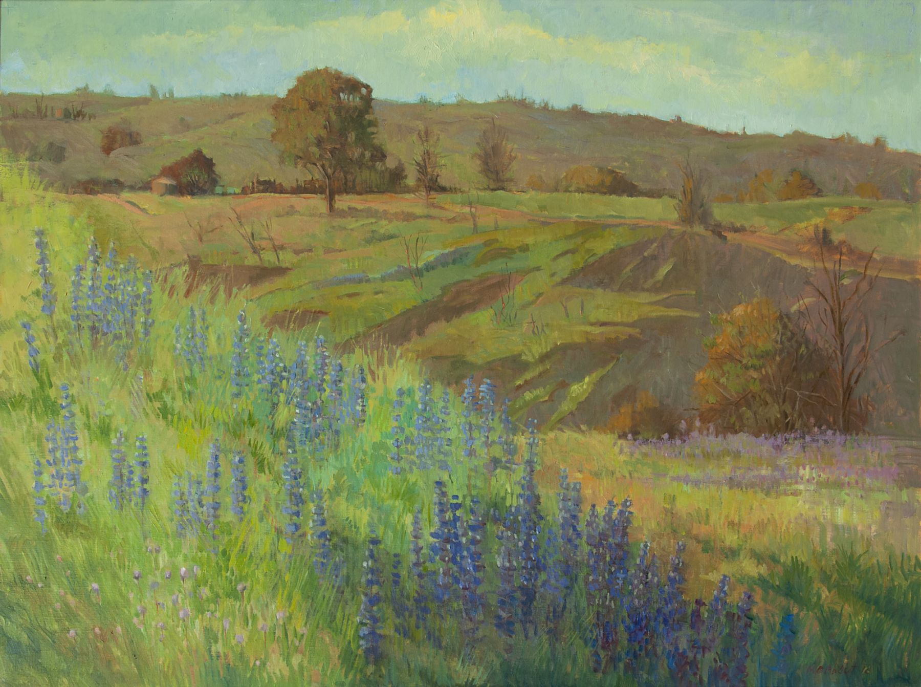 Meredith Brooks Abbott, Lupine Hillside