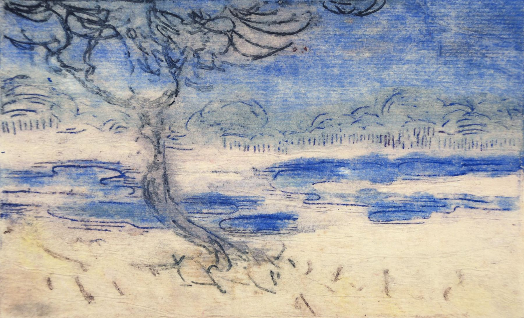 Blue Lagoon, Nell Brooker Mayhew