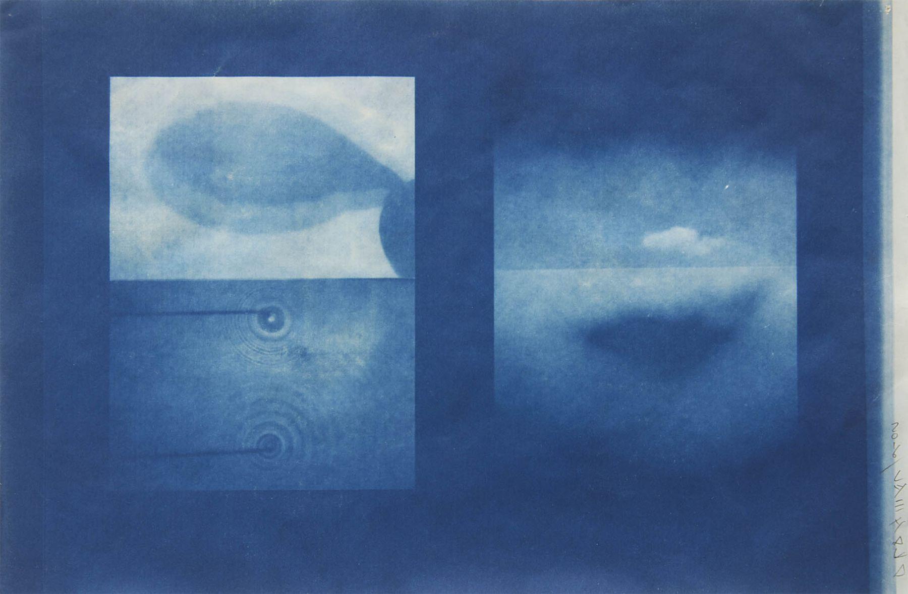 Dug Uyesaka, Cyanotype Study