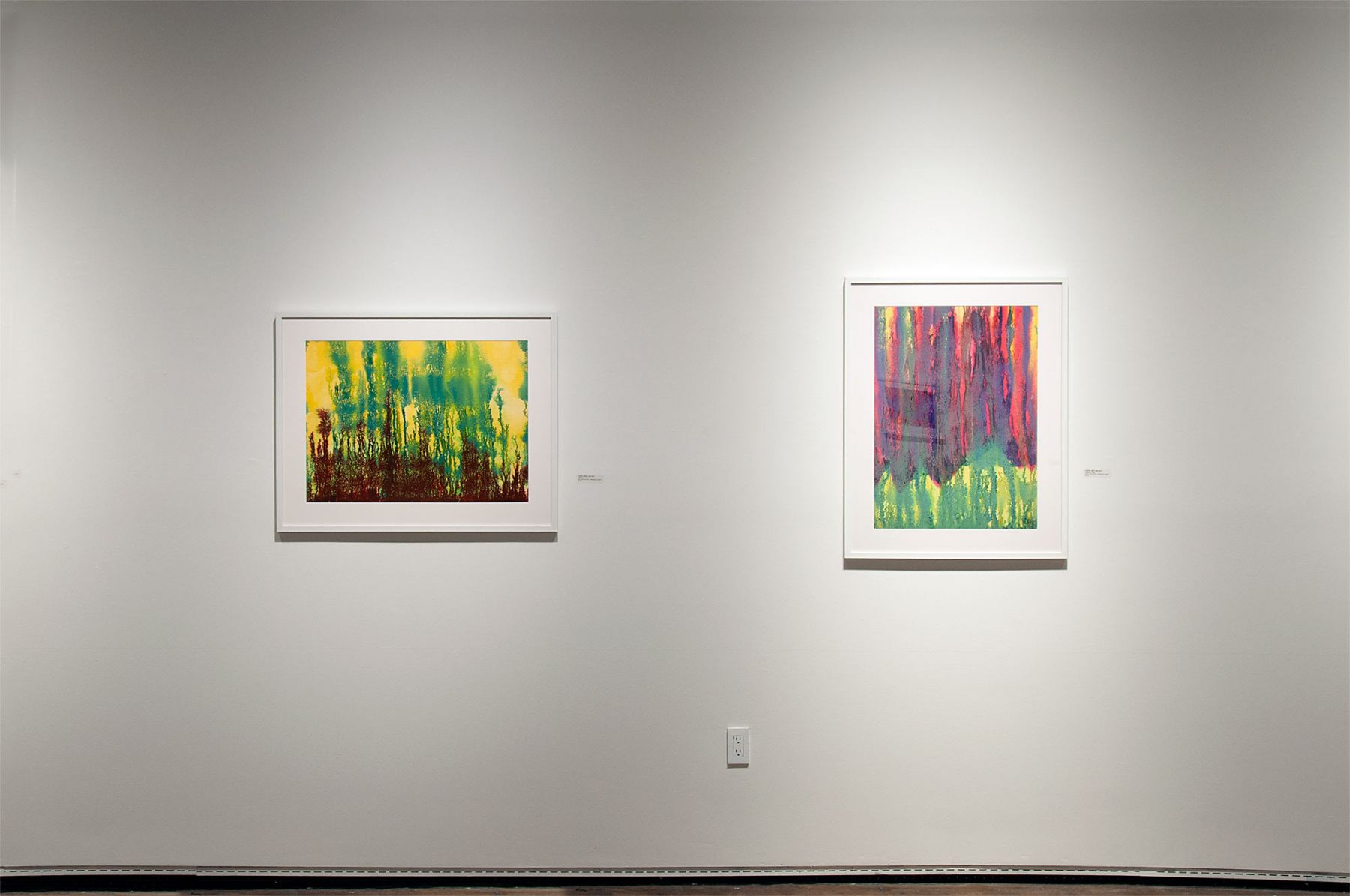 Installation photograph of THE INCREDIBLE TRUE STORY OF HARVEY LEEPA