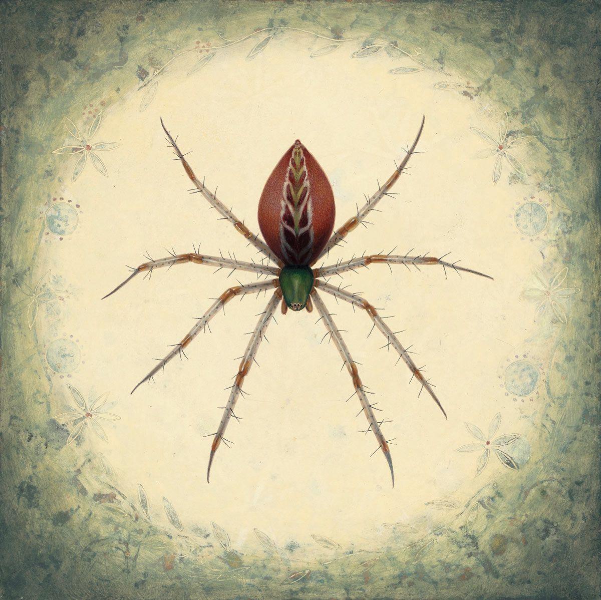 Susan McDonnell, Garden Spider, 2018