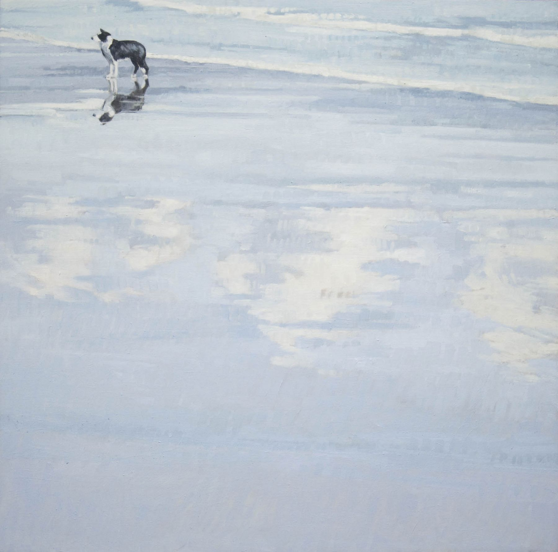 Nicole Strasburg, Canis Reflection, November 2014