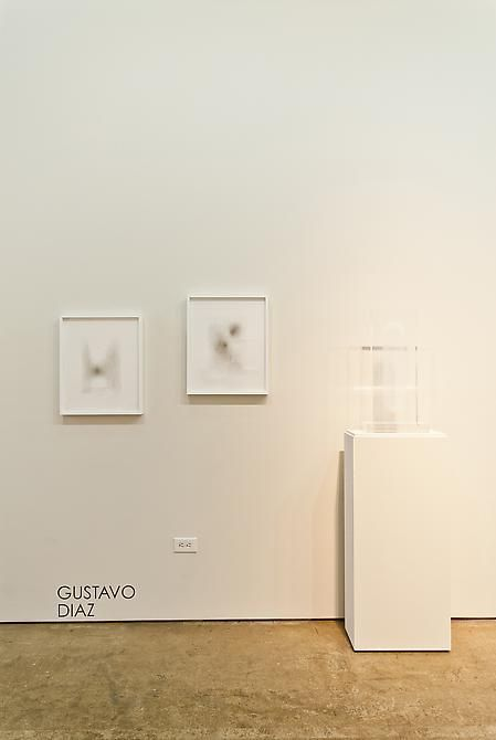 Marked Pages III, Gustavo Diaz, Sicardi Gallery installation view, 2011