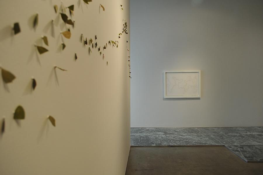 Miguel Angel Rojas, Oscar Muñoz, Gabriel de la Mora, Sicardi Gallery installation view, 2010
