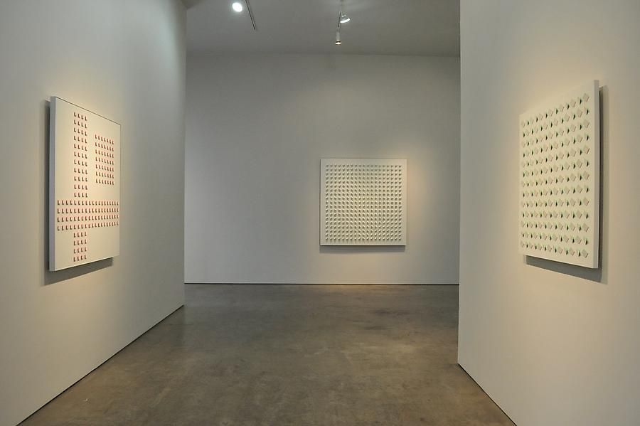 Luis Tomasello, Exhibition at Sicardi | Ayers | Bacino, 2011