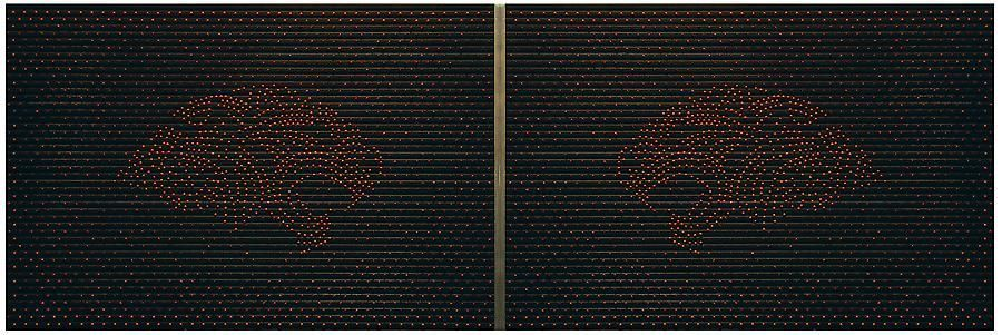 Miguel Ángel Rojas, Parceros, 2007/2008. Peony seeds on rubber and aluminum, 23.6 in. x 35.4 in.