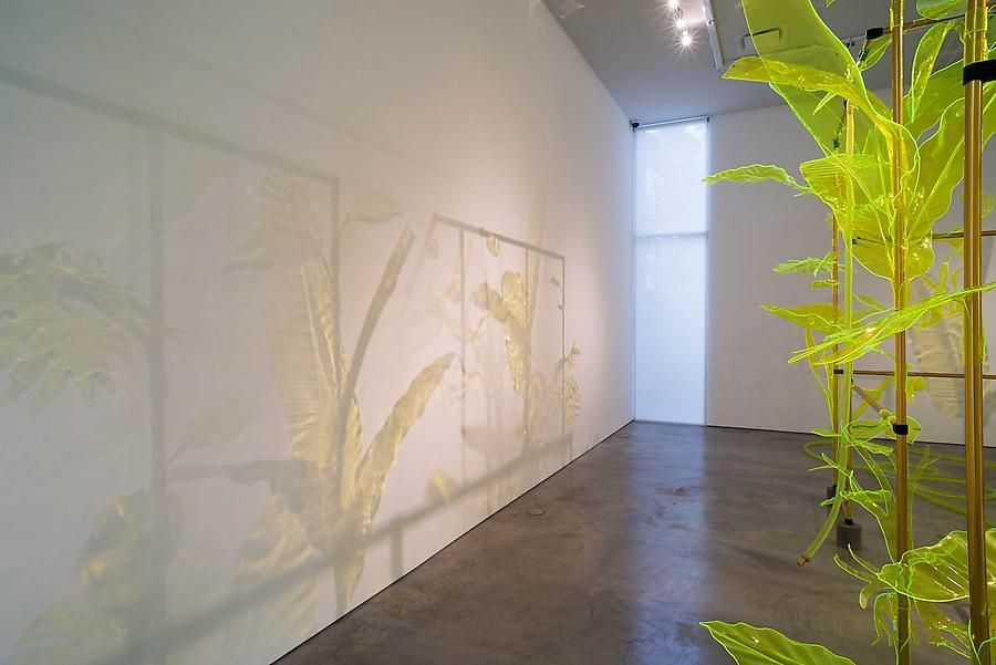Thomas Glassford, Afterglow, Installation view, 2014.