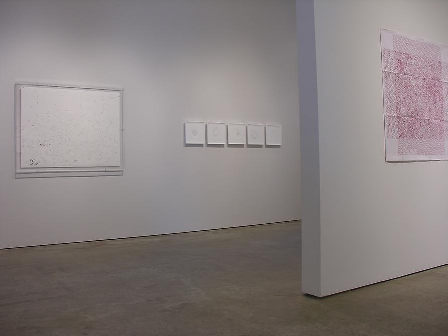 Luis Roldan, Gabriel de la Mora, León Ferrari, Sicardi Gallery installation view, 2008