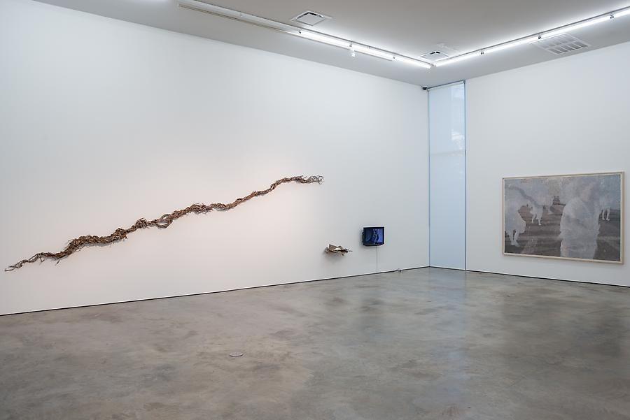 Miguel Ángel Rojas & John Sparagana, El Cuerpo Sutil, Installation view, 2014.