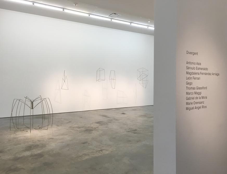 Exhibition: Divergent, Installation view, 2016.