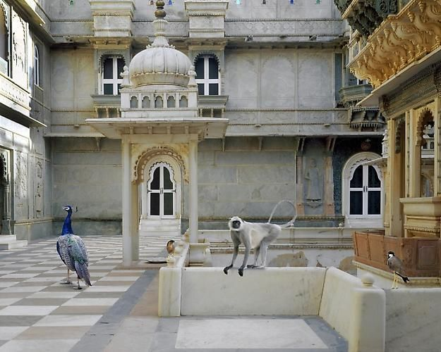 The Courtyard Conference, Dungarpur Palace.