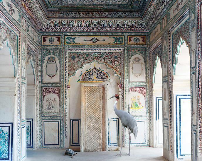 Amrita's Message, Nagaur Fort, Nagaur, 2012, 23.5 x 30 inch archival pigment print