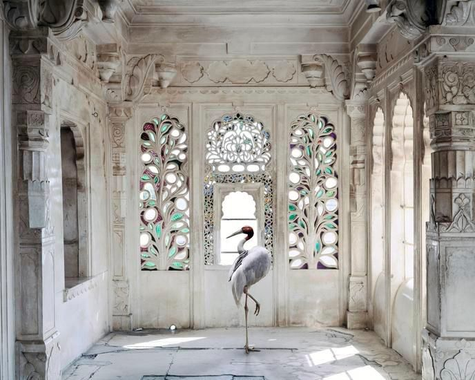 A Place Like Amravati, Udaipur City Palace Udaipur 2, 2012, 23.5 x 30 inch archival pigment print
