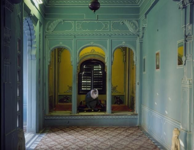 Karen Knorr, 	Solitude of the Soul, Udaipur City Palace, 2010