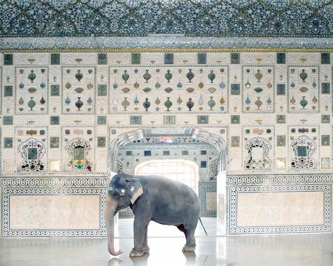 Temple Servant, Amber Fort, Jaipur 2014, 48 x 60 inch archival pigment print