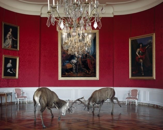 The King's Reception, 2006, 	26 x 30 inch pigment print