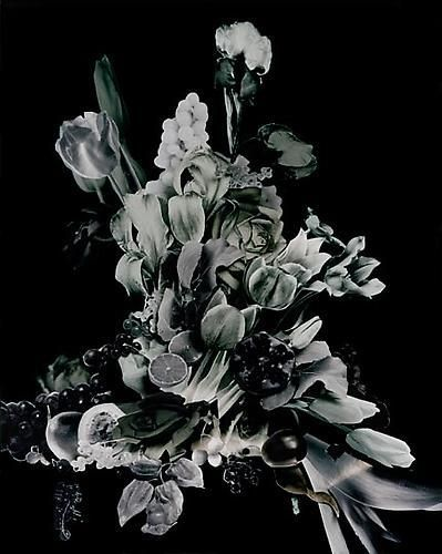 Scheltens and Abbenes. Bouquet III. 2008. 48 x 40 inch Enduraflex print.