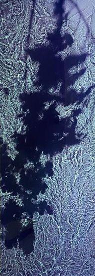 River Taw (II). 1998 - 1999