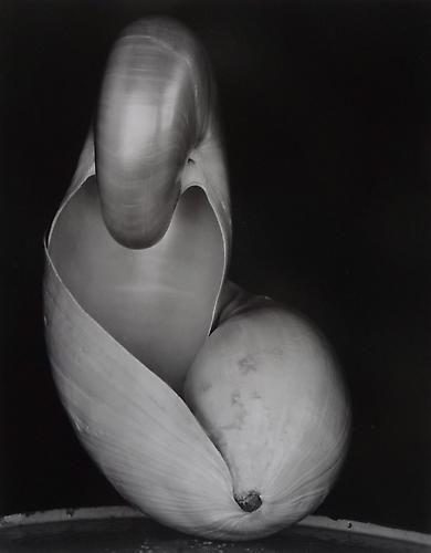 Shell, 1927.