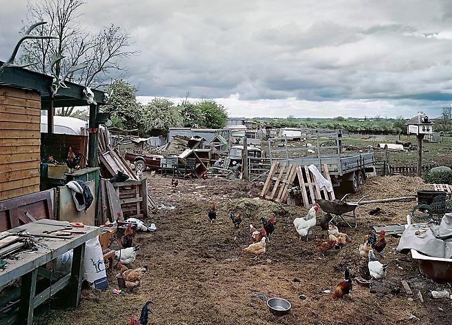 Thomas Bangsted. Pear Tree Farm, 2005.