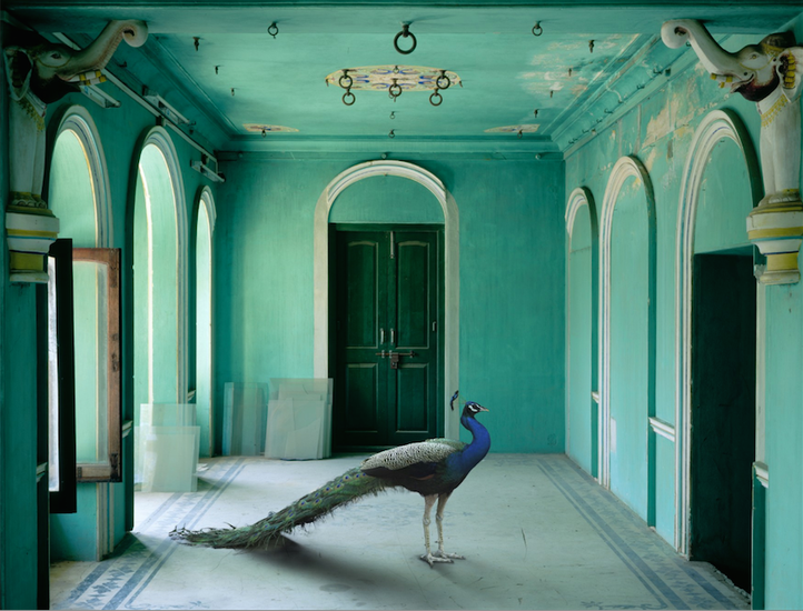 The Queen's Room, Zanana Palace, Udaipur, 2011, 48 x 60 inch archival pigment print