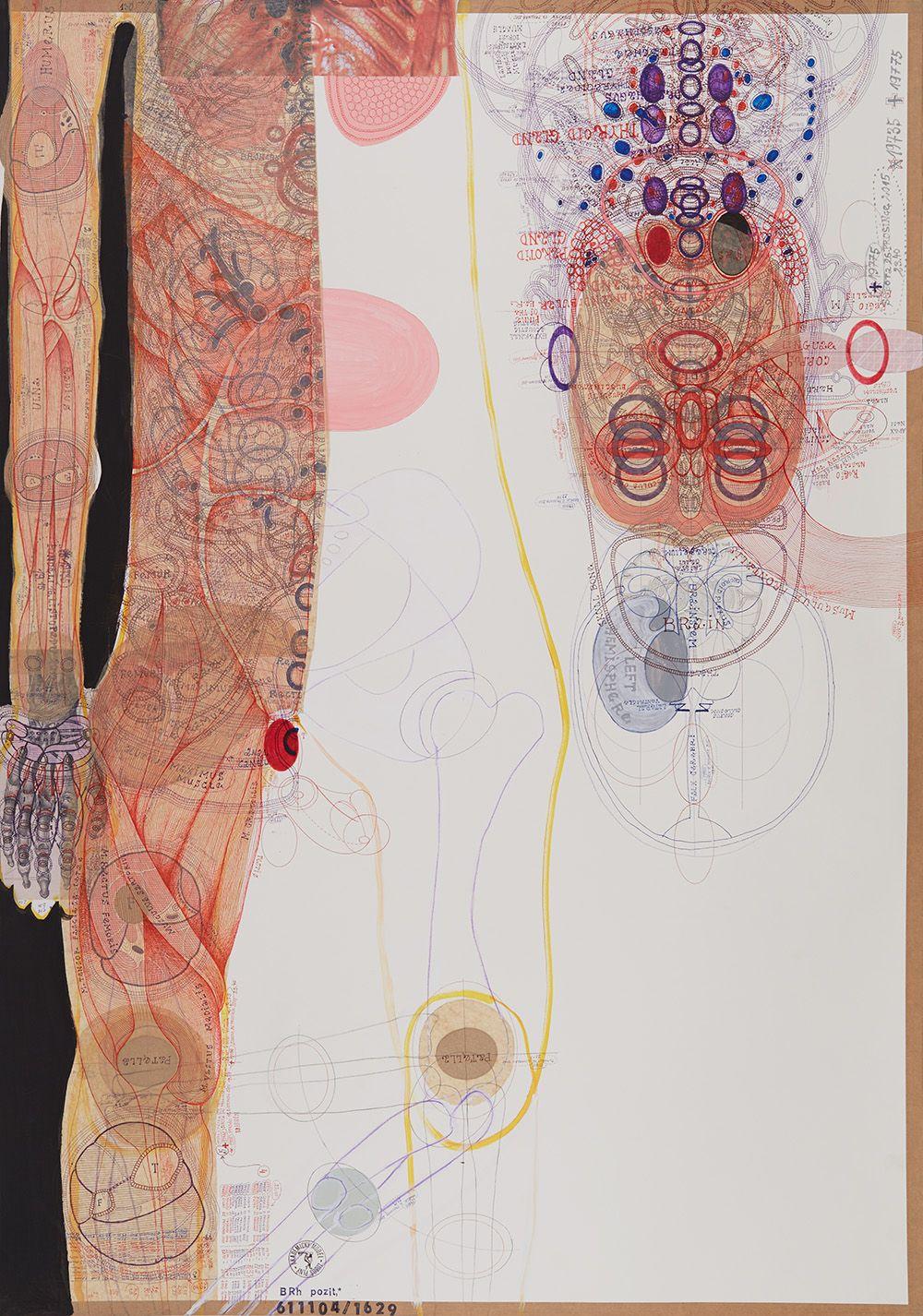 Luboš Plný(1961) Czech Republic, Brain, 2016, Ink, acrylic, collage on paper, 39.37x 27.56 in