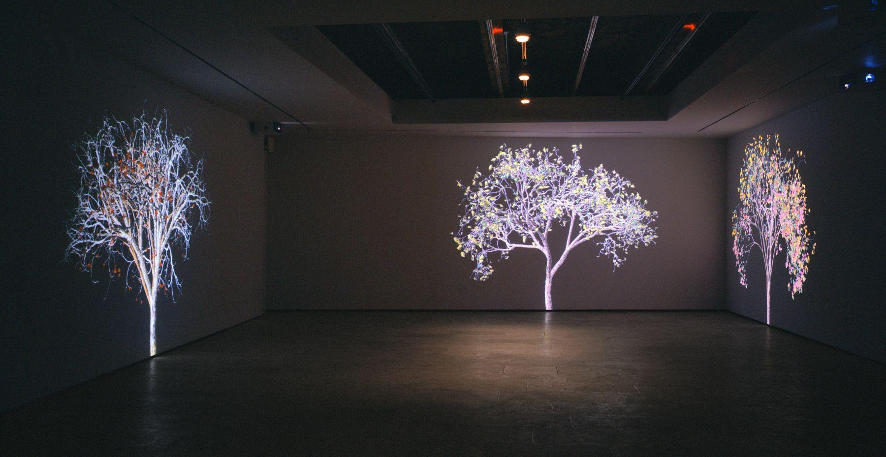 Jennifer Steinkamp: Digital Nature, Installation view,Telefónica Foundation Space, Madrid, Spain
